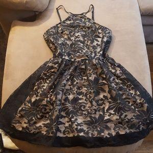 Tobi black lace dress